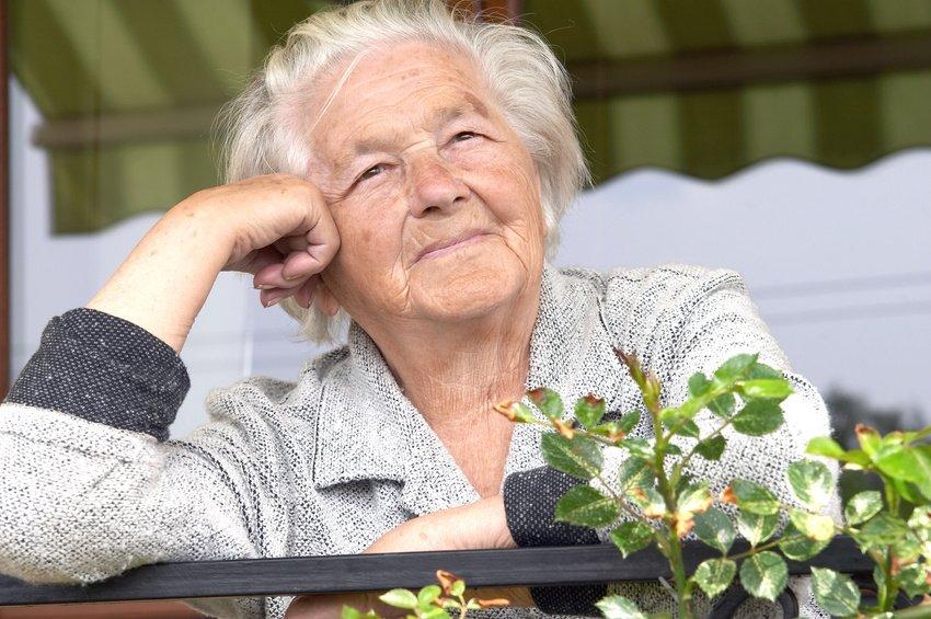 Дмитрий Савельев высказался за расширение льгот для сельских пенсионеров