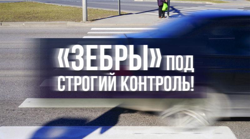Депутат Савельев предложил ужесточить нормативные акты, касающиеся оснащения пешеходных переходов